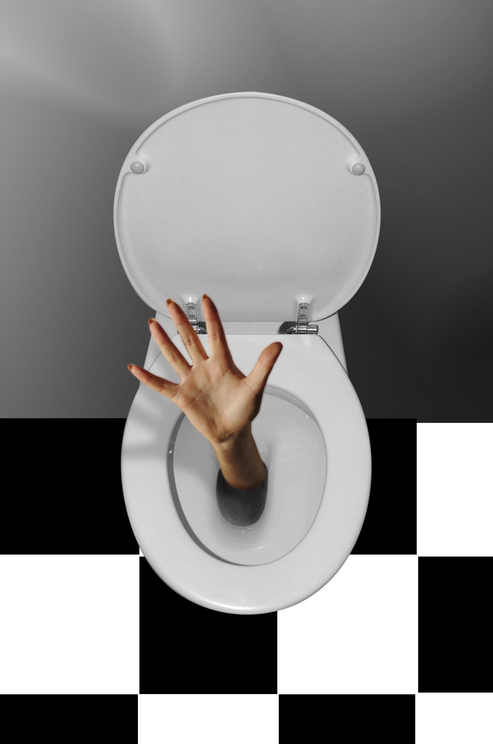 Politiske toaletter !